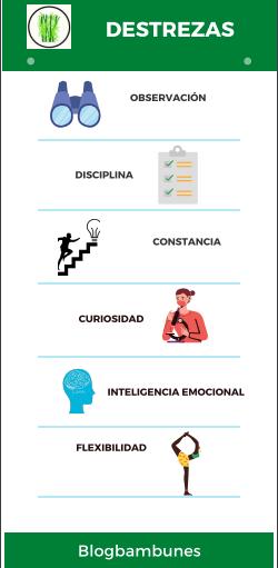 ¿Qué destrezas debes desarrollar para una vida simple? - Infografia
